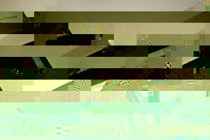Ledereinbände mit unbedruckten Seiten