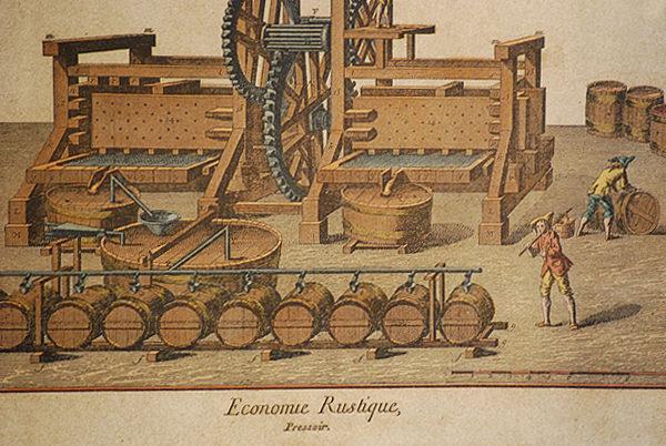 Economia rustica
